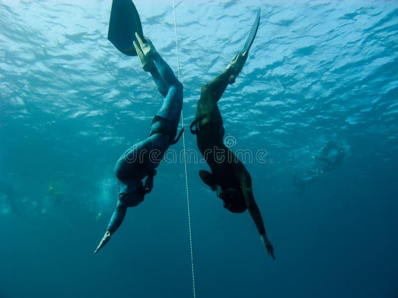 Zwei freedivers bilden simultanen Sturzflug im Bue Loch lizenzfreie stockbilder