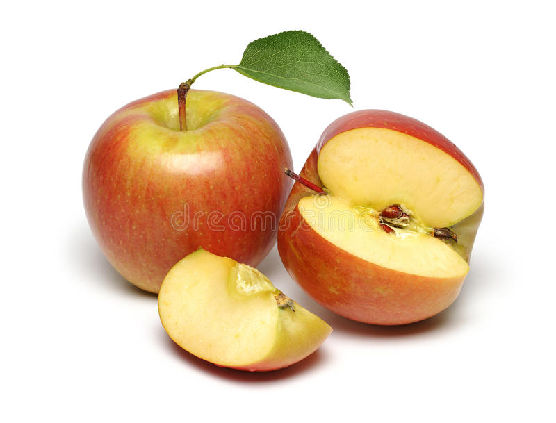 Zwei frische Äpfel lizenzfreie stockbilder