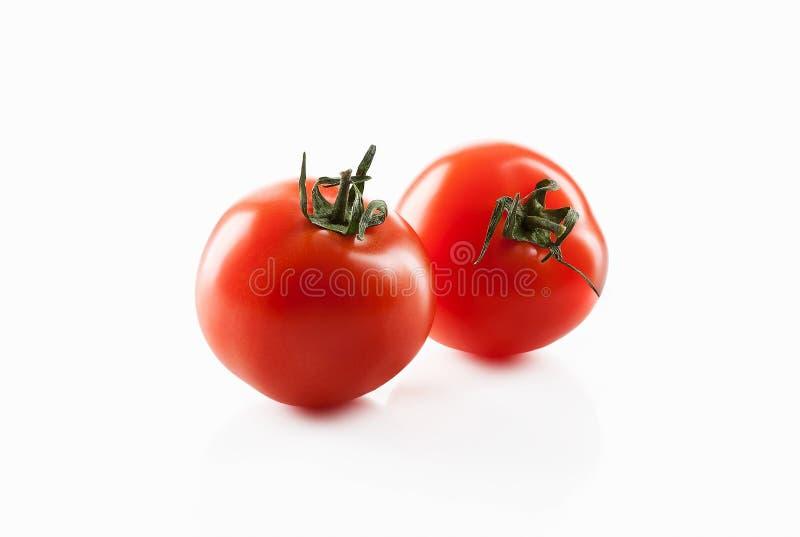Zwei frische rote Tomaten lokalisiert auf Weiß lizenzfreies stockfoto