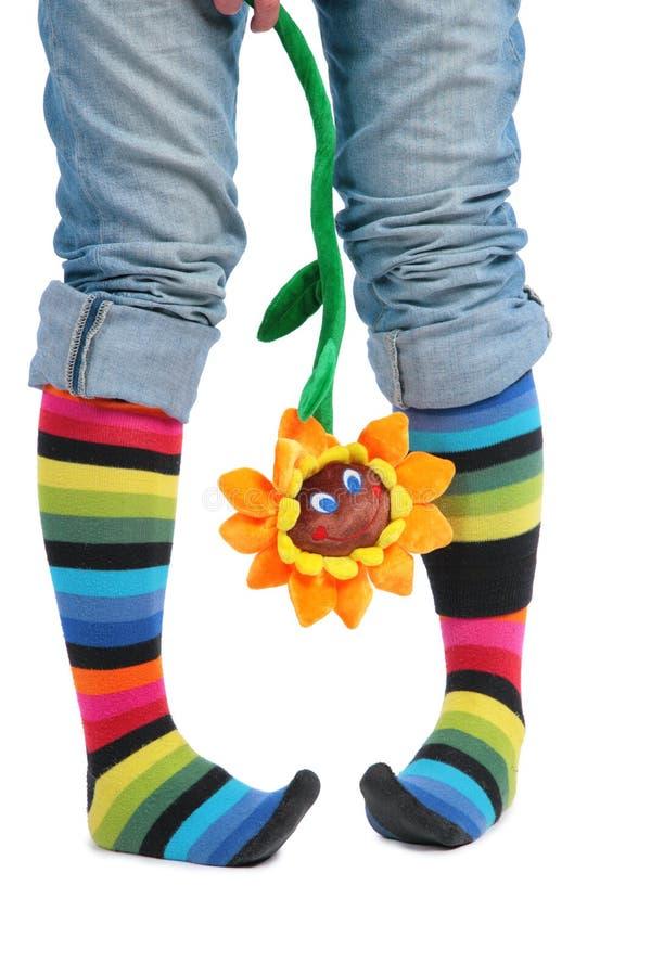 Zwei Fuß in den mehrfarbigen Socken und in der Sonnenblume lizenzfreies stockbild