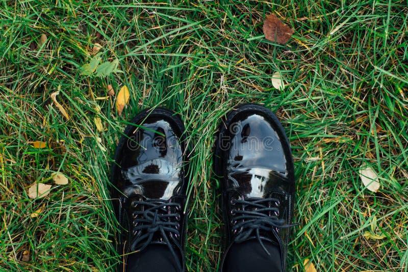 Zwei Fuß in den schwarzen Schuhen, die auf das grüne Gras mit gefallenem Herbstlaub treten stockbilder