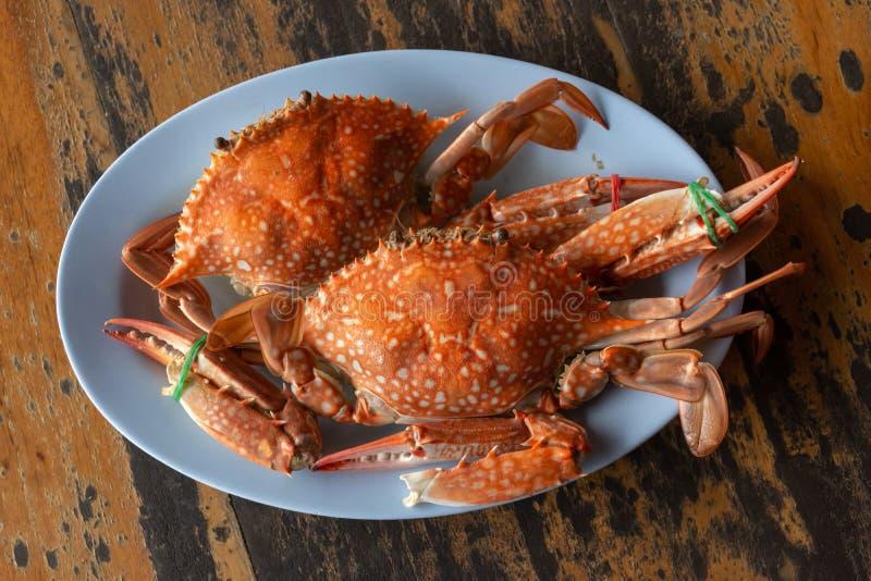 Zwei gedämpfte Krabben lizenzfreie stockbilder