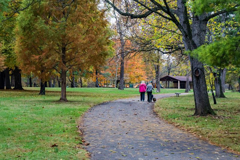 Zwei gehende Frauen ein Hund in einem lokalen Park stockbild