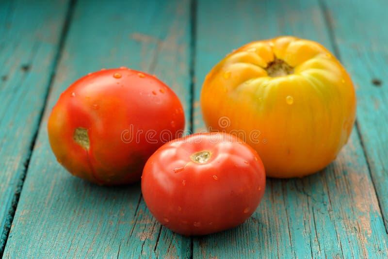 Zwei gelbe Tomaten des Rotes eins lizenzfreie stockfotografie