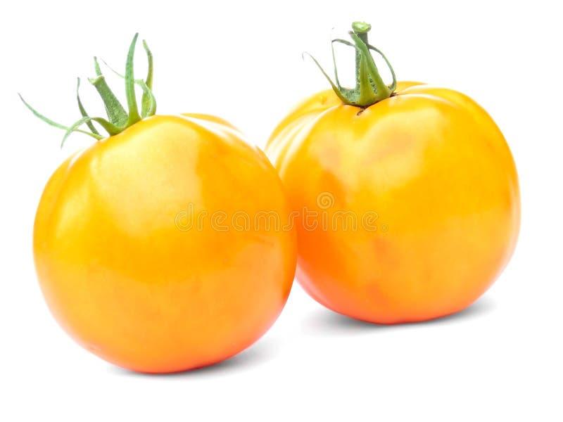 Zwei gelbe Tomaten, getrennt stockfoto