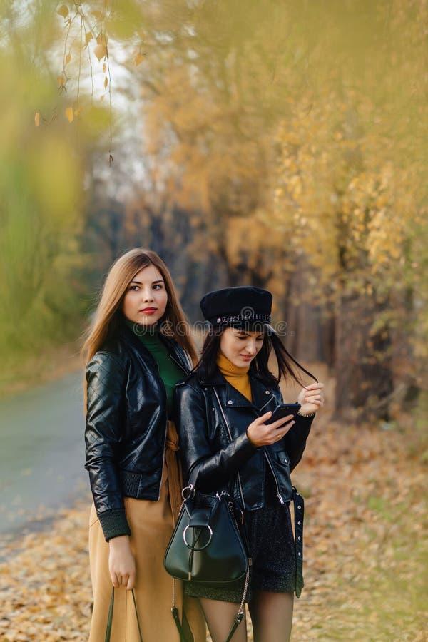 zwei gemütliche junge Mädchen gehen an der Herbstparkstraße Fotos machen lizenzfreie stockbilder