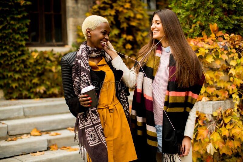 Zwei gemischtrassige Freundinnen der Junge recht am Herbsttag stockfotografie