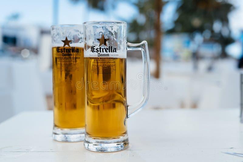 Zwei Gläser kaltes Bier lizenzfreie stockfotos