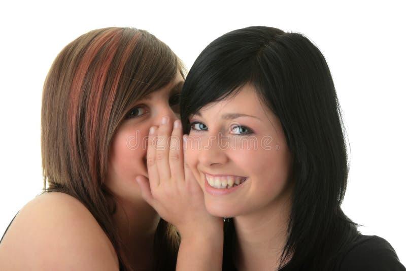 Zwei glückliche junge Freundinnen, die über Weiß sprechen stockbilder