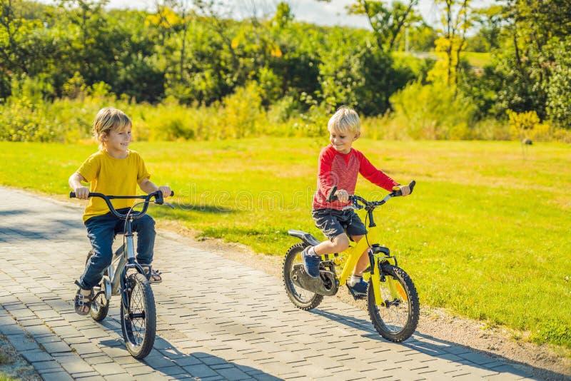 Zwei glückliche Jungen, die in den Park radfahren stockbilder