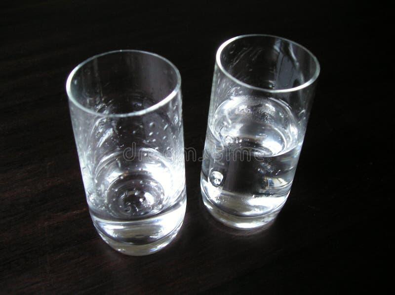 Zwei Glas mit Pflaumeweinbrand lizenzfreies stockfoto
