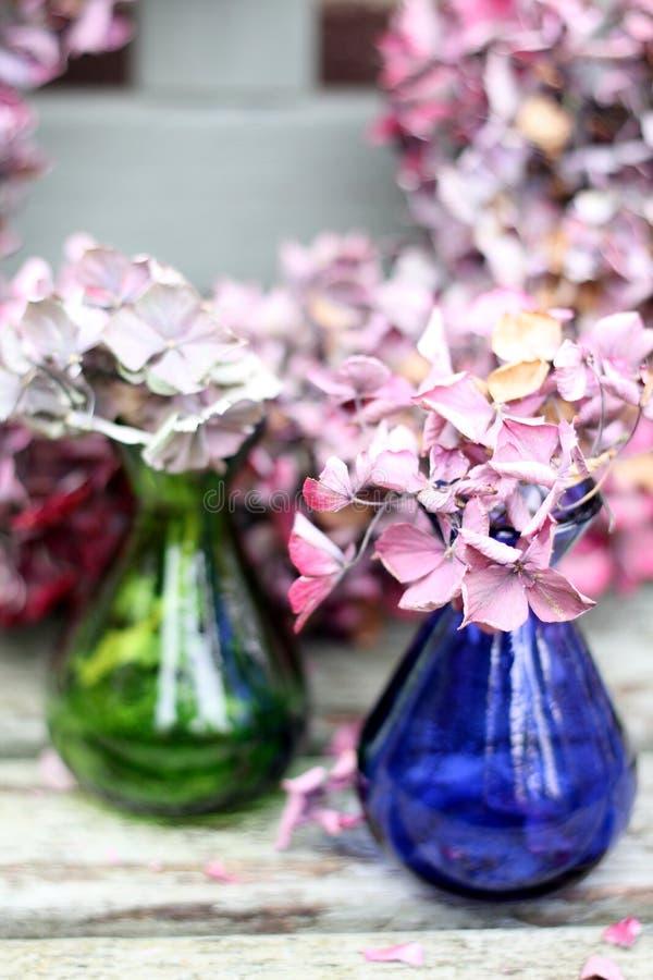 Zwei Glasvasen trockneten blasses - rosa hyrdragea Kranz stockfoto