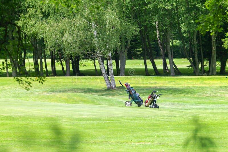 Zwei Golf-Wagen lizenzfreies stockfoto