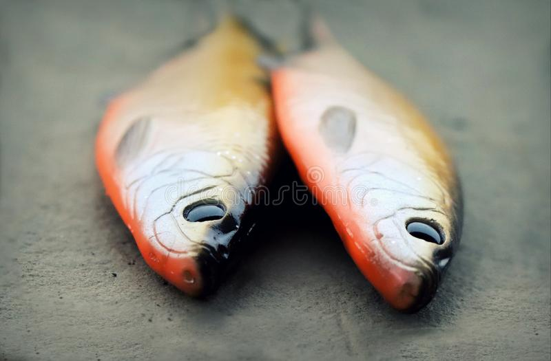 Zwei große lebensechte weiche Fischereiköder lizenzfreie stockfotografie
