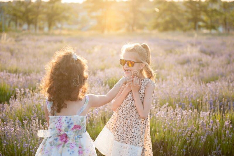 Zwei hübsche kleine Mädchen in den Kleidern und in der Sonnenbrille unter Blumenfeldsommer stockfoto