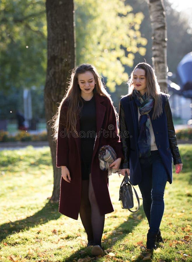 Zwei hübsche Mädchen in den Mänteln gehen in den sonnigen Park des Herbstes stockfoto
