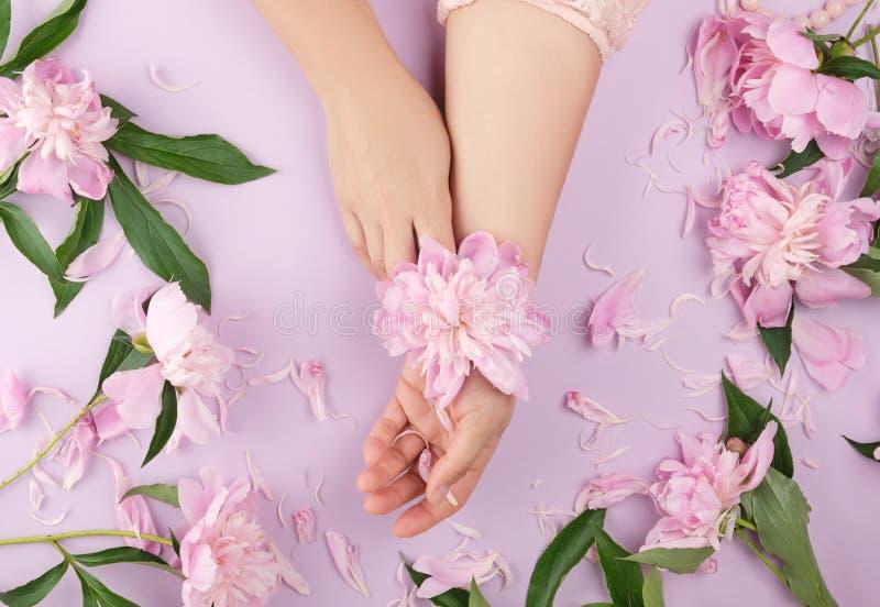 zwei H?nde eines jungen M?dchens mit glatter Haut und des Blumenstrau?es der rosa Pfingstrosen lizenzfreies stockfoto