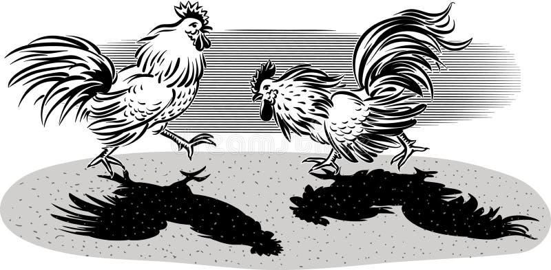 Zwei Hahnen in einem Kampf vektor abbildung