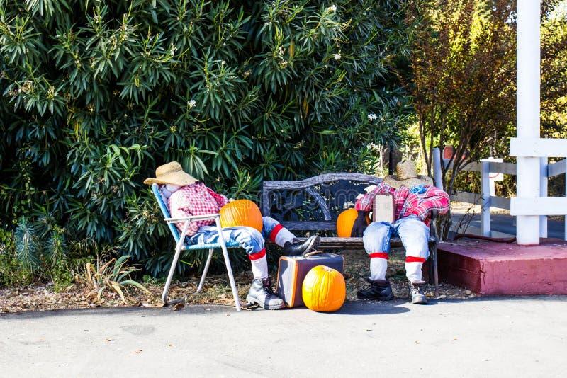 Zwei Halloween-Vogelscheuchen, die mit Kürbisen u. Koffern sich entspannen lizenzfreies stockfoto