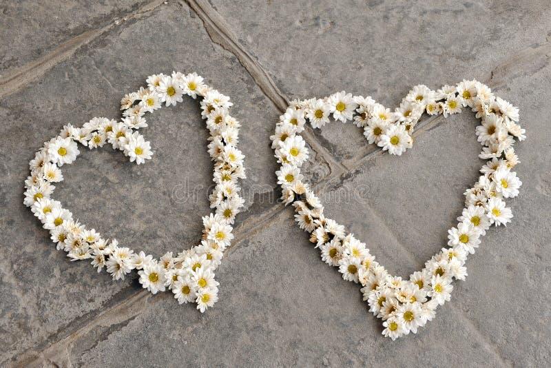 Zwei Herzformen gemacht von den Gänseblümchen, auf Pflasterung lizenzfreies stockbild