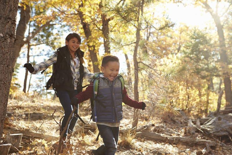 Zwei hispanische Kinder haben den Spaß, der in einem Wald läuft lizenzfreies stockfoto