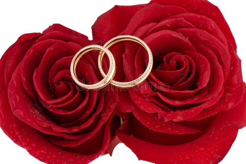 Zwei Hochzeitsringe und rote Rosen lizenzfreie stockfotografie