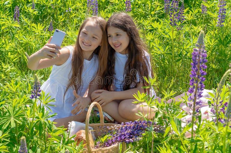 Zwei jugendlich Mädchen machen selfie an einem Telefon unter Blumen auf einem Gebiet an einem sonnigen Tag stockbilder