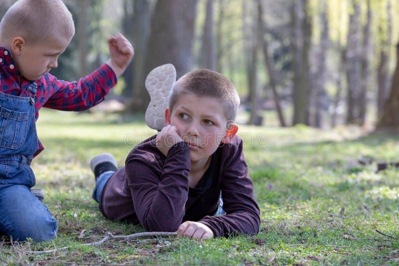 Zwei junge Brüder, die im Park streiten stockbilder