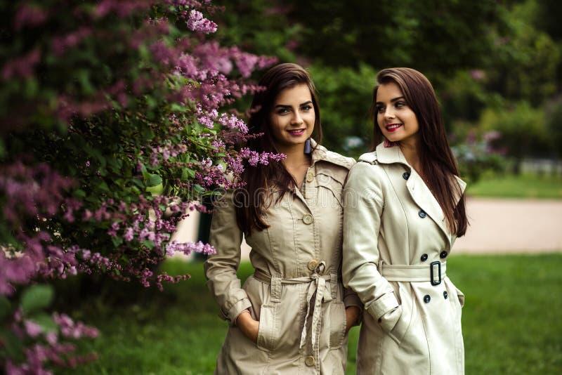 Zwei junge Frauen der schönen Zwillinge in der nahen blühenden Flieder der Regenmäntel stockfoto
