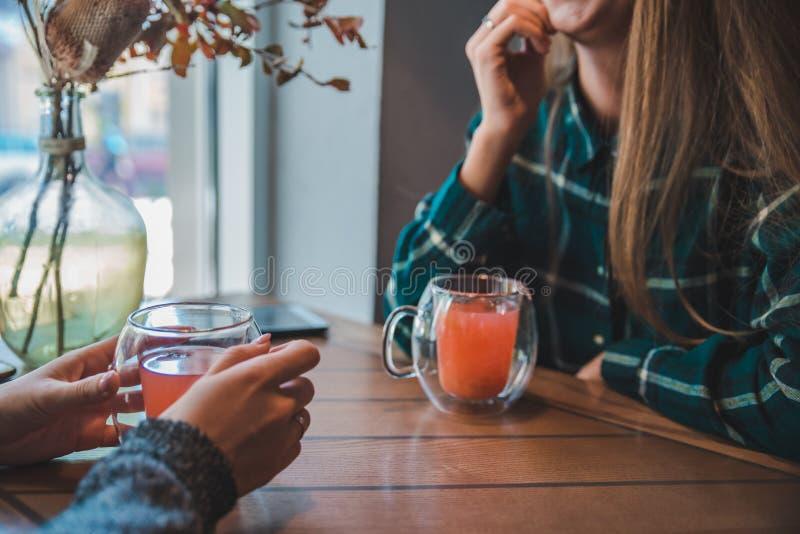 Zwei junge Frauen, die im Café und in trinkendem Aufwärmentee sprechen lizenzfreies stockfoto
