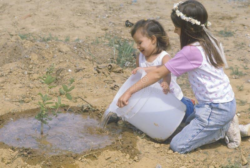 Zwei junge Mädchen, die einen Baum wässern lizenzfreie stockbilder