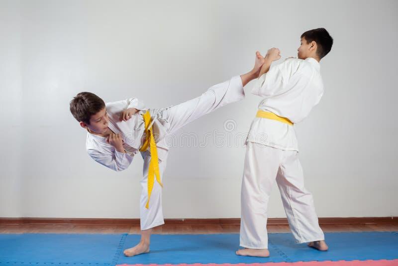 Zwei Jungen demonstrieren die Kampfkünste, die zusammenarbeiten lizenzfreie stockfotografie