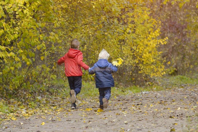 Zwei Jungen, die in den Herbstpark gehen Sonniger Tag Rückseitige Ansicht lizenzfreie stockfotografie