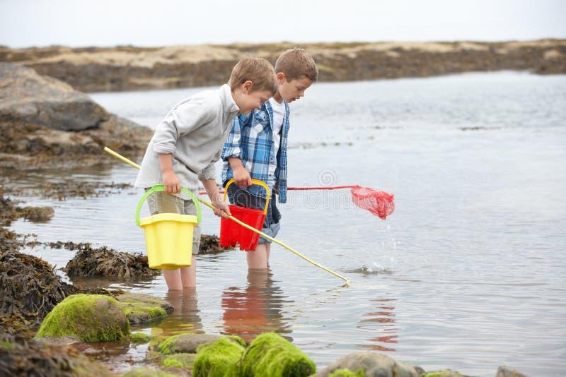 Zwei Jungen, die Shells auf Strand montieren stockfotografie