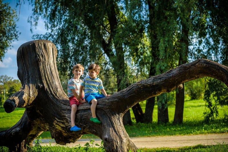 Zwei Jungen sitzen auf einem Klotz Das Kind geht in den Sommerpark, oder Wald, den das Kind auf einem gefallenen Baum sitzt Spaß  stockfoto