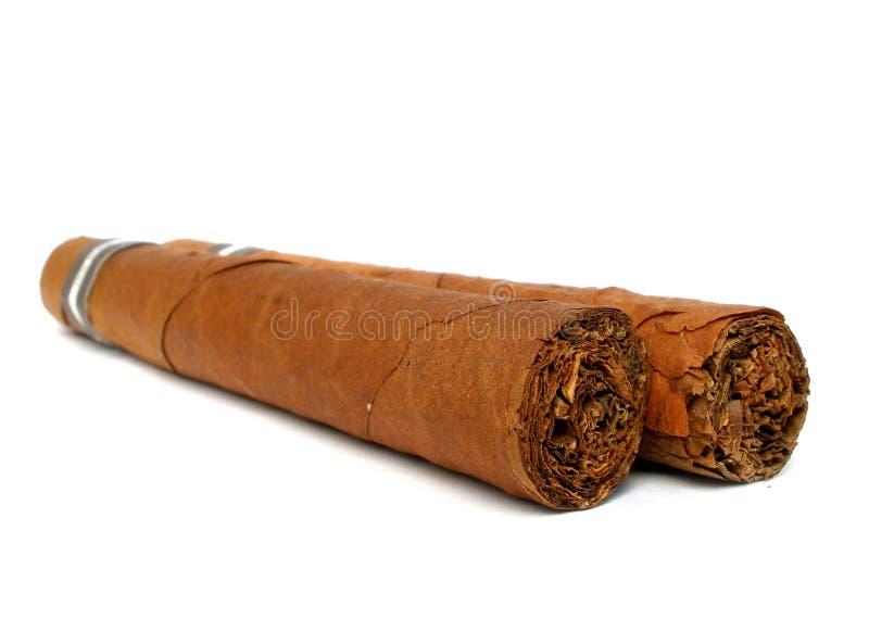 Zwei karibische Zigarren lizenzfreies stockfoto