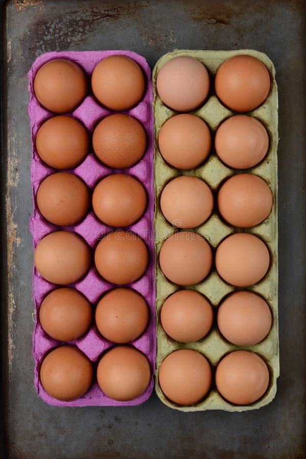 Zwei Kartone Brown-Eier lizenzfreies stockfoto