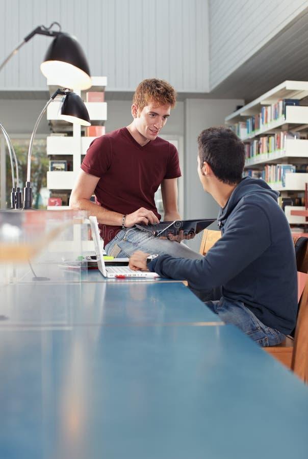 Zwei Kerle, die in der Bibliothek studieren stockbild