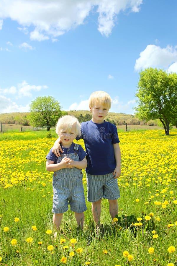 Zwei Kinder, die draußen in der Blumen-Wiese stehen lizenzfreie stockfotos
