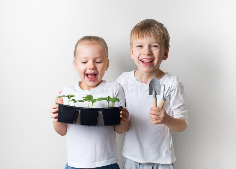 Zwei Kinder mit Spr?sslingen und Gartenarbeitwerkzeugen, ?kologie und Umweltthema auf wei?em Hintergrund lizenzfreie stockfotos