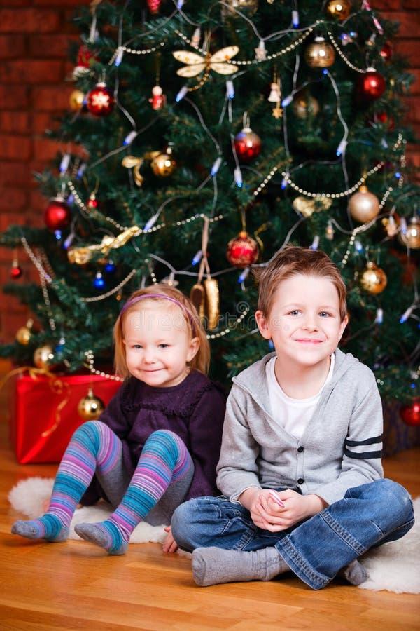 Zwei Kinder nähern sich Weihnachtsbaum stockbilder