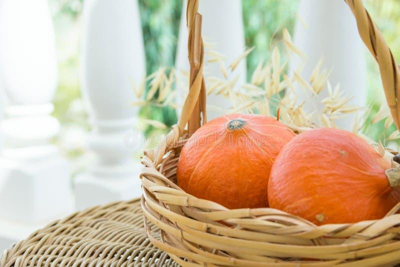 Zwei kleine Leuchtorange Heilroom rote Kuri Pumpkins im Weidenkorb trockener Autumn Plants auf Rattantisch auf Häuschen-Terrasse  stockfoto