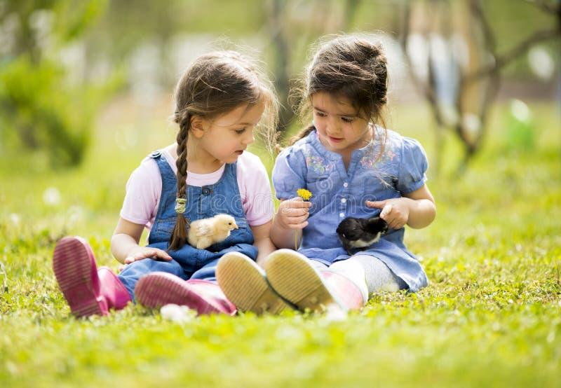 Zwei kleine Mädchen mit Hühnern lizenzfreies stockbild