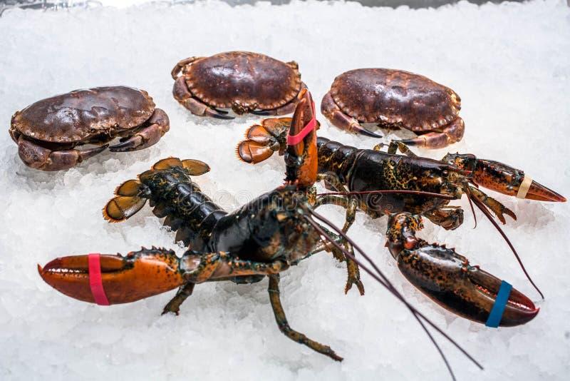 Zwei Livehummer und drei Krabben lizenzfreie stockfotos