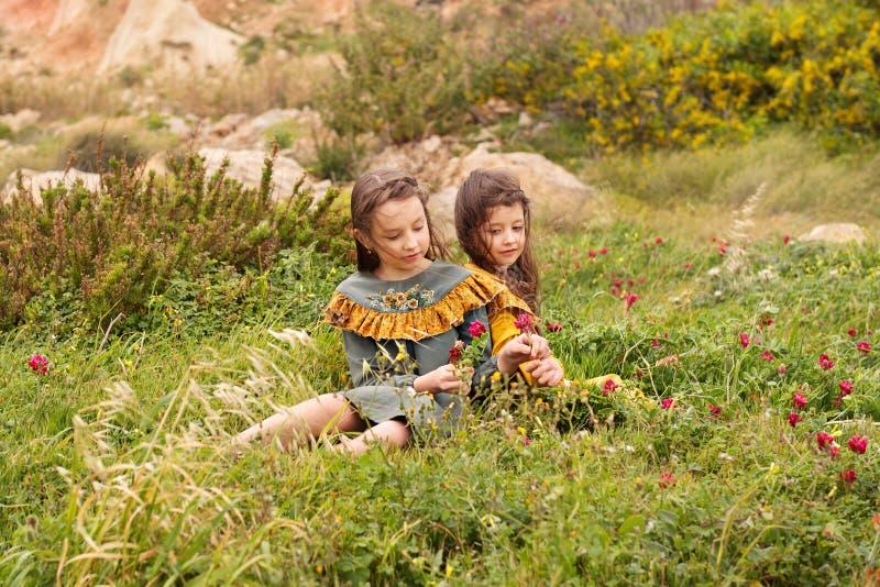 Zwei Mädchen in der Retro- Weinlese kleidet Sammelnblumen auf einem Wiesenfeld lizenzfreie stockbilder