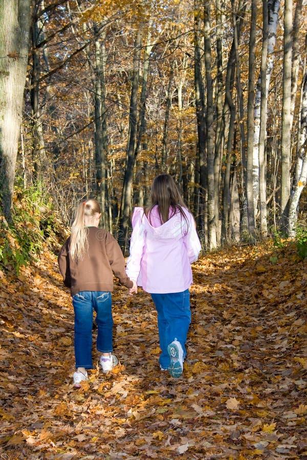 Zwei Mädchen, die Hand in Hand in den Wald gehen. stockbilder