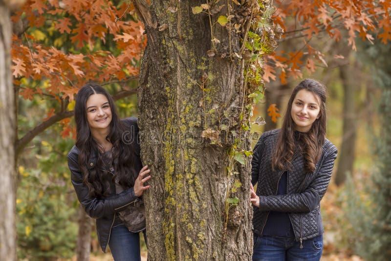 Zwei Mädchen, die Spaß im Herbstpark haben lizenzfreies stockbild