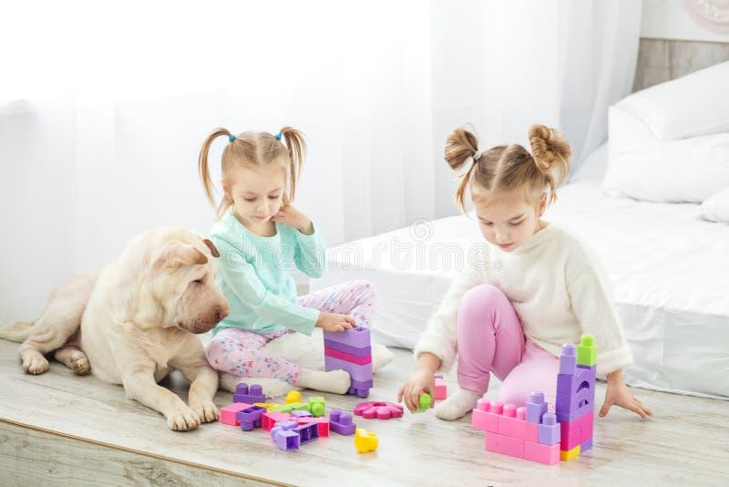 Zwei Mädchen ` Kinder werden durch Plastikspielwarenblöcke gespielt Der Hund L lizenzfreie stockbilder