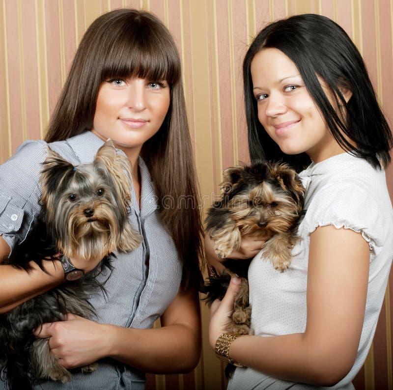 Zwei Mädchen mit puppys stockfotografie