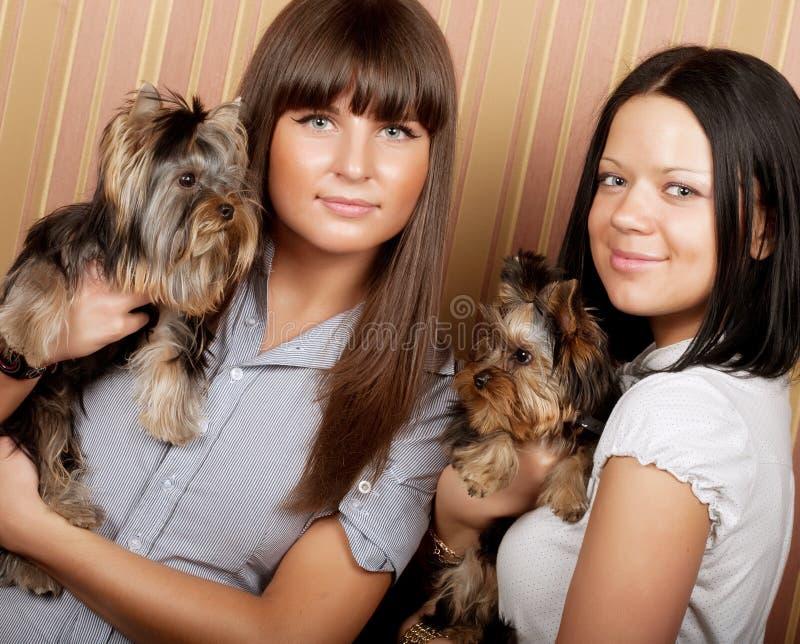 Zwei Mädchen mit puppys stockfotos